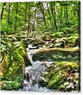 The Emerald Forest 3 Acrylic Print