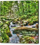 The Emerald Forest 4 Acrylic Print
