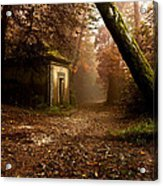 The Enchanted Trail Acrylic Print