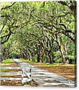 The End Of The Alley Acrylic Print