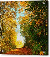The End Of The Road. Acrylic Print