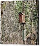 Birdhouse Environment Of Hamilton Marsh  Acrylic Print