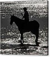 The Equestrian-silhouette Acrylic Print
