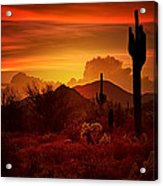 The Essence Of The Southwest Acrylic Print
