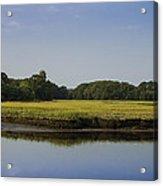 The Essex Marsh Acrylic Print