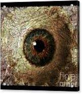 The Eyes 12 Acrylic Print