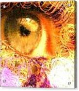 The Eyes 4 Acrylic Print