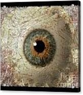 The Eyes 6 Acrylic Print