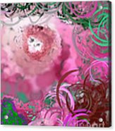 The Eyes Have It Pink Acrylic Print