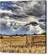 The Farm In The Summer Acrylic Print