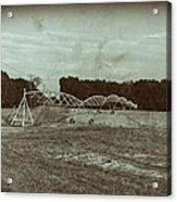 The Field Acrylic Print