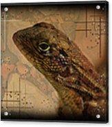 The Florida Lizard Acrylic Print