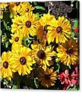 The Flower 16 Acrylic Print