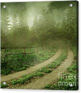The Foggy Road Acrylic Print