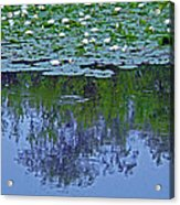 The Forest Beneath The Lilypads Acrylic Print