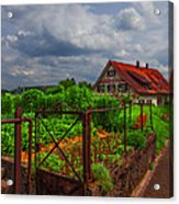 The Garden Gate Acrylic Print by Debra and Dave Vanderlaan