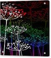 The Garden Of Your Mind Rainbow 3 Acrylic Print