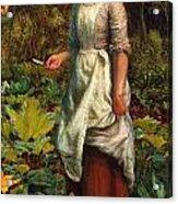 The Gardeners Daughter Acrylic Print