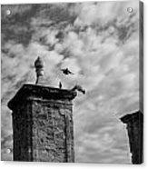 The Gate At Castillo Acrylic Print