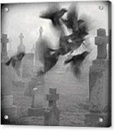 The Ghost Birds Acrylic Print