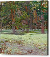 The Glade Covered With A Moss Acrylic Print by Victoria Kharchenko