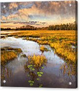 The Glades At Sunset Acrylic Print