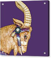 The Goat Who Likes Purple Acrylic Print