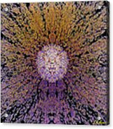 The God Particle Acrylic Print