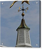 The Golden Dolphin Weathervane Acrylic Print by Juergen Roth