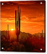 The Golden Southwest Skies  Acrylic Print