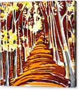 The Golden Way Acrylic Print