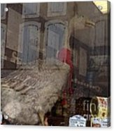 The Humorous Goose Acrylic Print by France  Art
