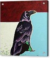 The Gossip - Raven Acrylic Print