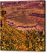 The Grand Canyon II Acrylic Print