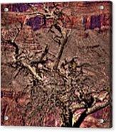 The Grand Canyon Viii Acrylic Print