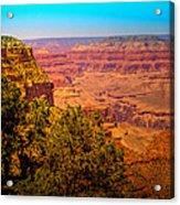 The Grand Canyon Xi Acrylic Print