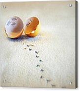 The Great Eggscape Acrylic Print