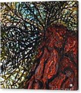 The Great Hemlock Acrylic Print
