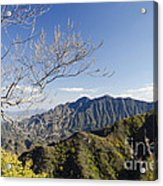 The Great Wall 834 Acrylic Print