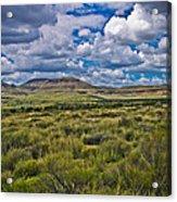 The Green Desert Acrylic Print