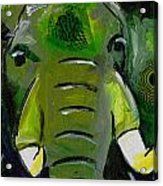 The Green Elephant In The Room Acrylic Print