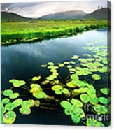 The Green Of Our Land Acrylic Print