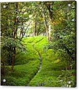 The Green Path Acrylic Print