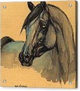 The Grey Arabian Horse 1 Acrylic Print