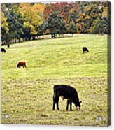 The Grounds Crew Acrylic Print