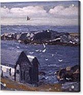 The Gulls Of Monhegan Acrylic Print