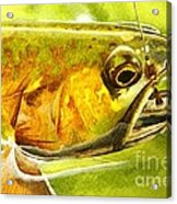 The Hare And The Trout Acrylic Print