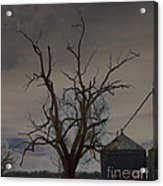 The Haunting Tree Acrylic Print by Alys Caviness-Gober