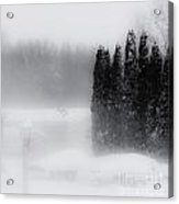 The Haze Of Winter Acrylic Print