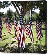 The Healing Field Acrylic Print by Laurel Powell